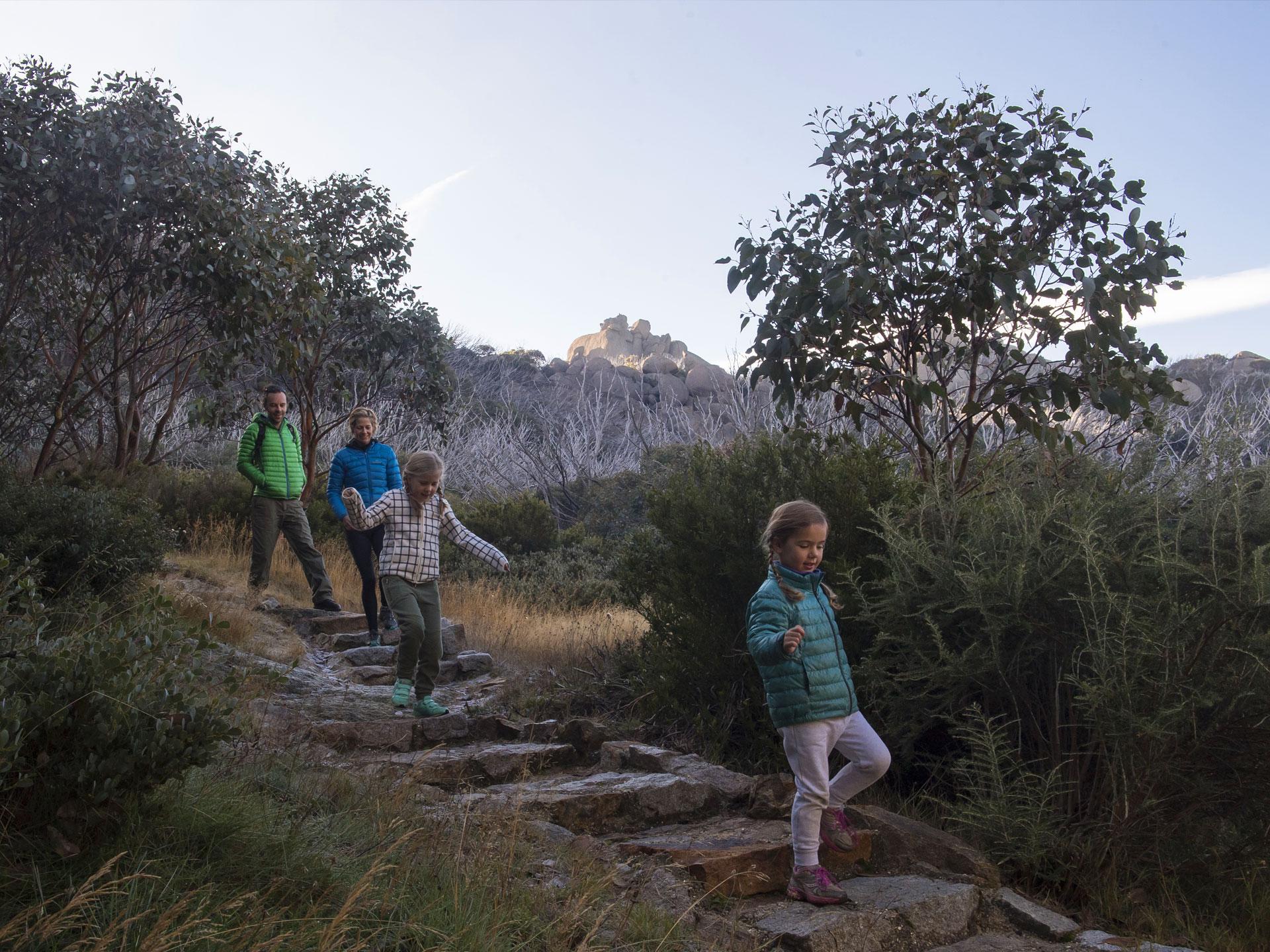 Family low grade hike Mount Buffalo